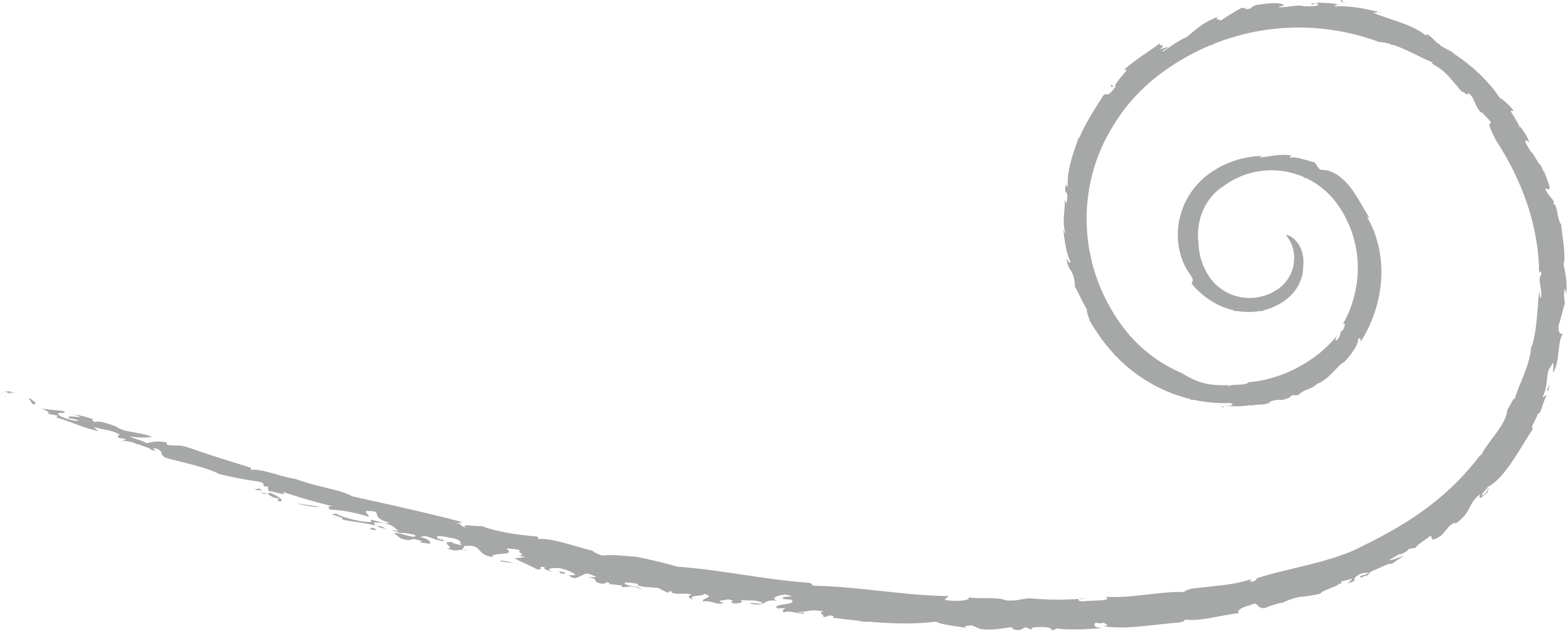 Logo Spiral 20 blanc gris